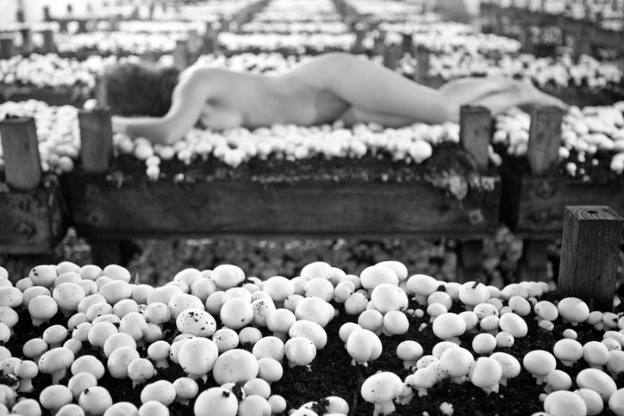 Nude photography art woman hiding boundaries